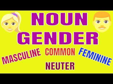 Noun Gender Youtube In 2021 Nouns Gender Masculine Feminine