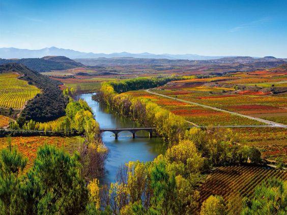 Baños de Ebro. Rioja Alavesa. Álava. Spain
