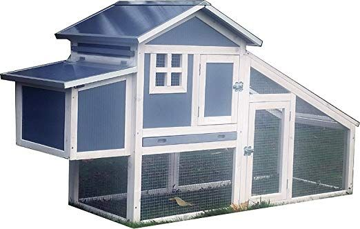 Feelgooduk Poultry Ark Home Chicken Coop Amazon Co Uk Pet Supplies Chicken Coop Coop Poultry