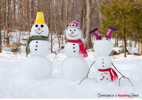 Fun Winter Picture Writing Prompt (image only.):