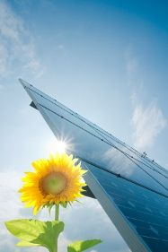 Learn Facts about Solar Energy