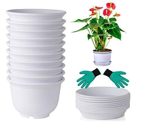 Deelf 10 Sets Plastic Flower Pots 6 Inch Planters With Drainage And Saucers For Modern Indoor Plants Click I In 2020 Plastic Flower Pots Herb Garden Pots Flower Pots