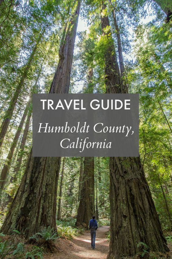 A Humboldt County travel guide: Things to see, do, and eat in Humboldt County, California // Travel tips for Eureka, Arcata & beyond.