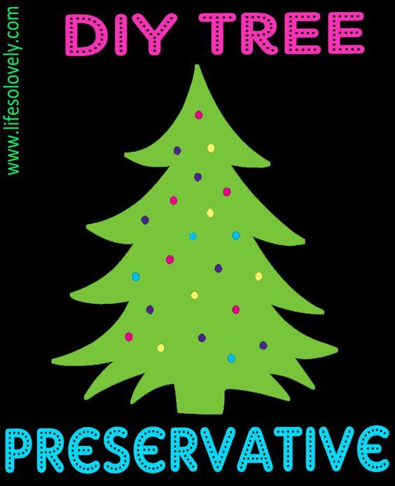 Diy Christmas Tree Preservative Christmas Tree Preservative Diy Christmas Tree Homemade Christmas Tree