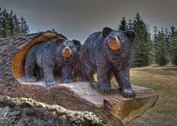 Bear cubs wood sculpture in hdr by njchow via