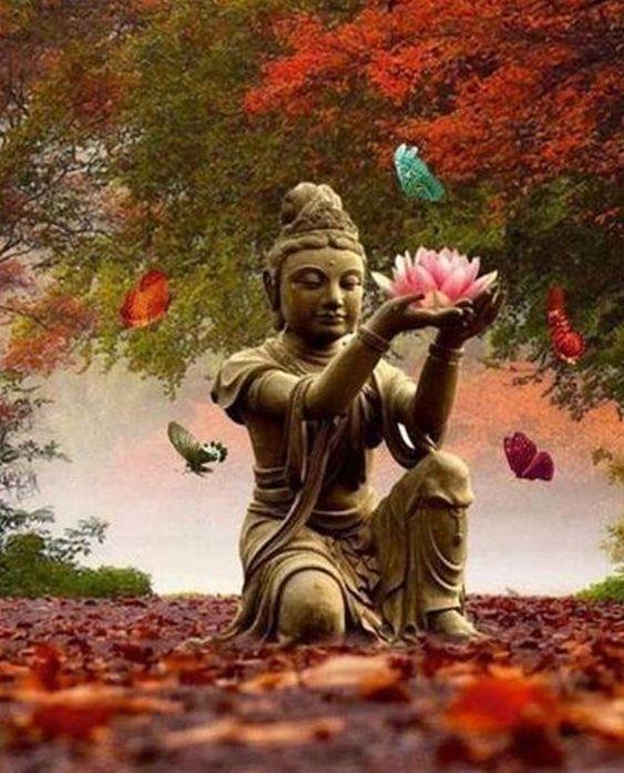 زندگی زیباتر میشود... به شرطی که به اندازه ی تمام برگ های پاییز برای یکدیگر آرزوی خوب داشته باشیم... @yoga_tour9215 #مدیتیشن #تور_یوگا…