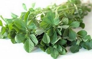 http://www.herbaldb.com/category/fenugreek/ Many Benefits but Few Side Effects of Fenugreek