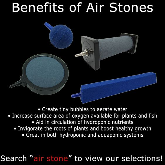Benefits of air stones in hydroponic and aquaponic systems. #airstone…
