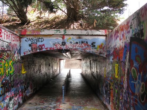 Free Expression tunnel-NC State University