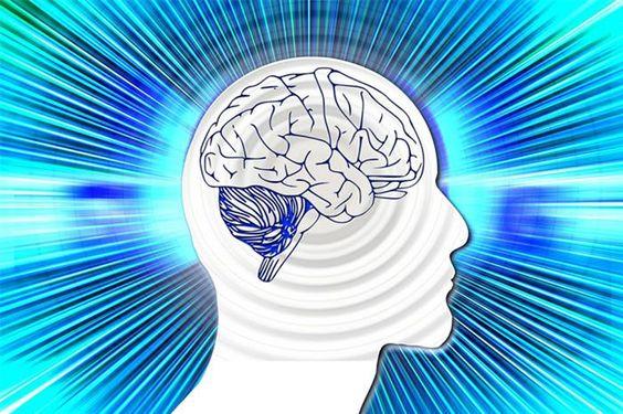 Mommy Blog: הפירות והירקות שישפרו לכם את תפקוד המוח
