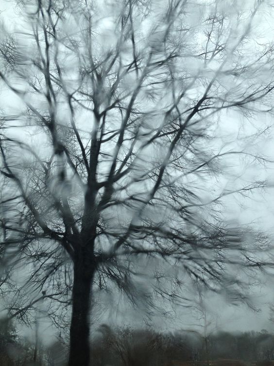 Cold Rainy Day