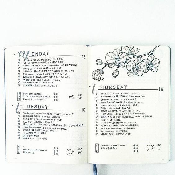 The Week Of My Vacation On My Bullet Journal The Days In