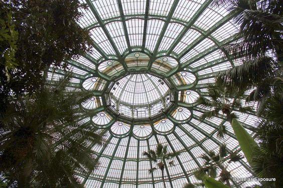 Bruselas Exposure: Los invernaderos Reales de Laeken