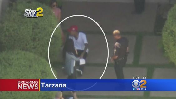 Singer Chris Brown Arrested On Assault Charge After Confrontation At His...