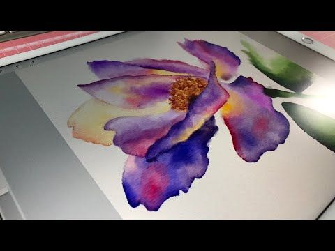 Watercolor Illustration In Procreate App Youtube Watercolor