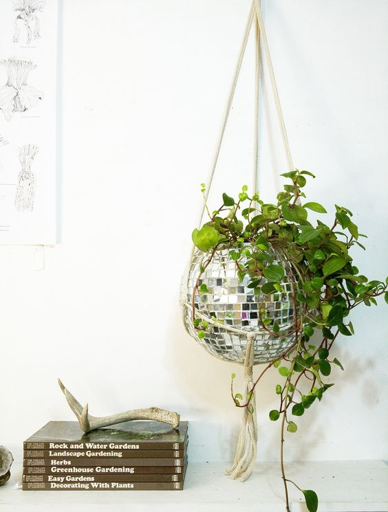 Does it get any more fun than this? Disco ball planter.