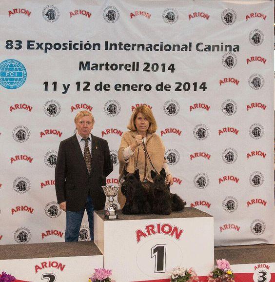 @Arion_ES Resultados de la #Exposición #Internacional #Canina #Martorell en www.perros365.com