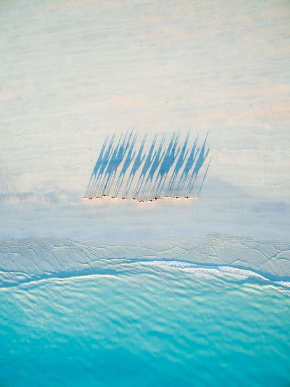 The year's best drone photography, selected by Dronestagram and National Geographic — Quartz