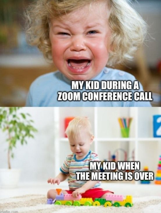 Funny Zoom Meeting Jokes Jokes Funny Zoom Conference Call