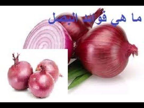 هل تعلم فوائد البصل و الأمراض التي يمكنه علاجها طريقة تحضير عصير البصل Onion Blog Blog Posts