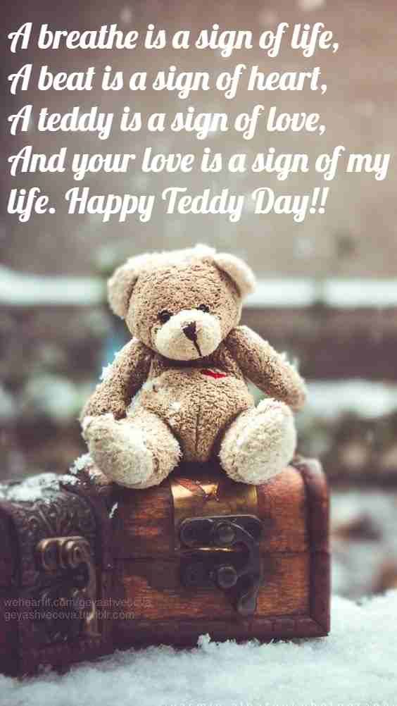 Teddy day quotes bears for my love. #TeddyDayQuotes | Teddy ...