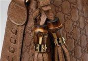 Gucci 'Jackie Bag' Detail