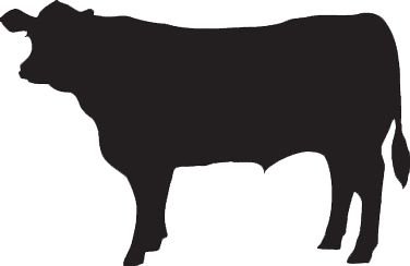 Dairy Cow Silhouette Clip Art Auto racing (also known as car racing ...