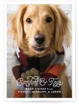 May he bring us comfort and toys. This photo card works for pets AND kids! Crazy!