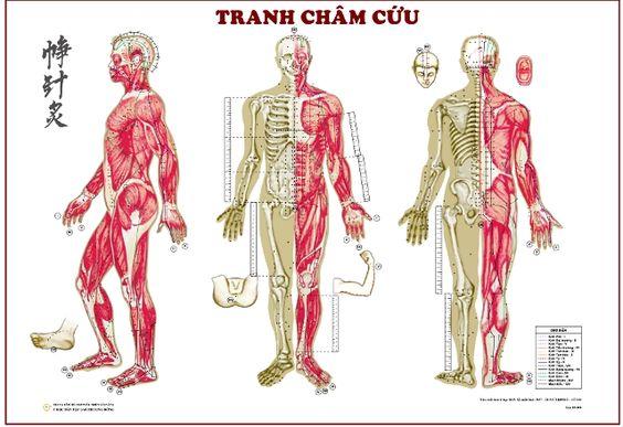 ytesonhuong-cham-cuu-co-tac-dung-gi
