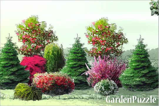 Strona Poludniowa Gardenpuzzle Projektowanie Ogrodow W Przegladarce Front Yard Garden Design Evergreen Garden Backyard Landscaping Designs