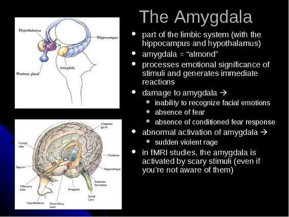 Physiological case study essay