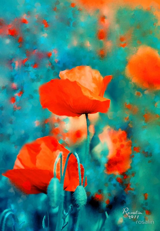 "Orange And Aqua: ""Poppies"" ~ Abstract Art By Rosalin"