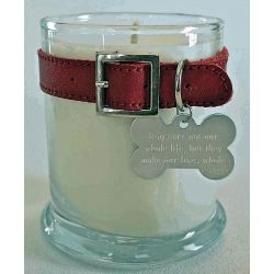 LOVE this idea, memorial candle for dog or cat, use their collar to surround a candle, you can add a custom tag with name/dates or use theirs.
