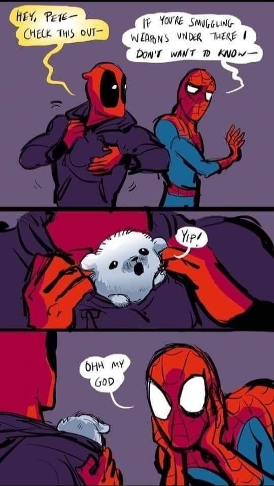 Pin By Queen Dark On Mcu In 2020 Funny Marvel Memes Spideypool