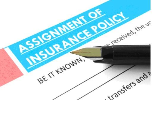 Assignment Under Life Insurance Life Insurance Broker Life Insurance Agent Whole Life Insurance