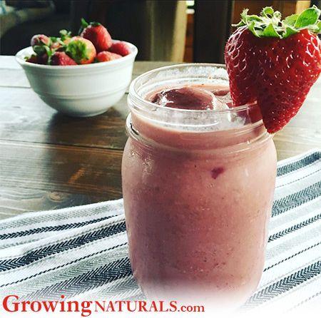 Growing Naturals - Protein Smoothie Recipes - Strawberries 'n' Cream Protein Smoothie via @annboroch  http://growingnaturals.com/portfolio-items/strawberries-n-cream-protein-smoothies