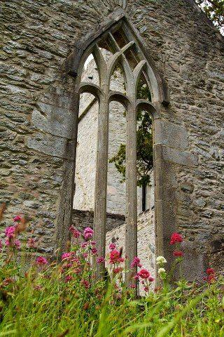 Muckross Abbey, Killarney 1448