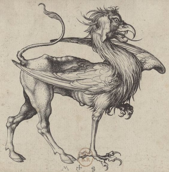 Le Griffon, gravure de Martin Schongauer (1450env. - 1491)