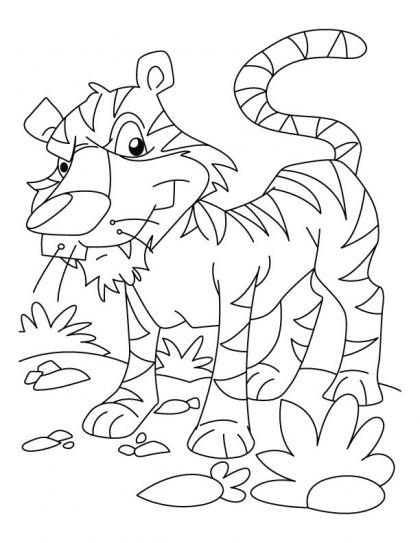 Sumatran tiger coloring pages Download Free Sumatran tiger - best of free coloring pages of endangered animals