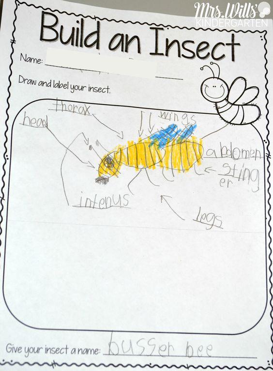 Activities Kindergarten And Student On Pinterest