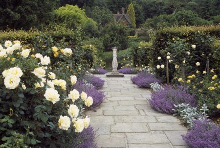 The Golden Rose Walk at Chartwell. ©National Trust Images/Stephen Robson