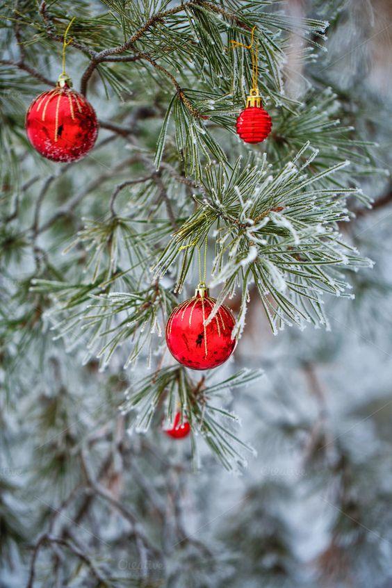 Red Christmas balls by Elena Vagengeim on @creativemarket