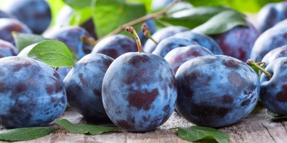 July and August are the peak season for plums in most parts of the country, and also the perfect time to sink your culinary teeth in this seasonal fruit. Try your hand at grilled plums, #plum sauce or even plum schnapps this summer and rediscover this ancient delight. #realfood