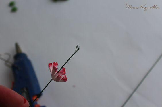 http://vk.com/feed?z=photo-83984584_377026553/album-83984584_219346470