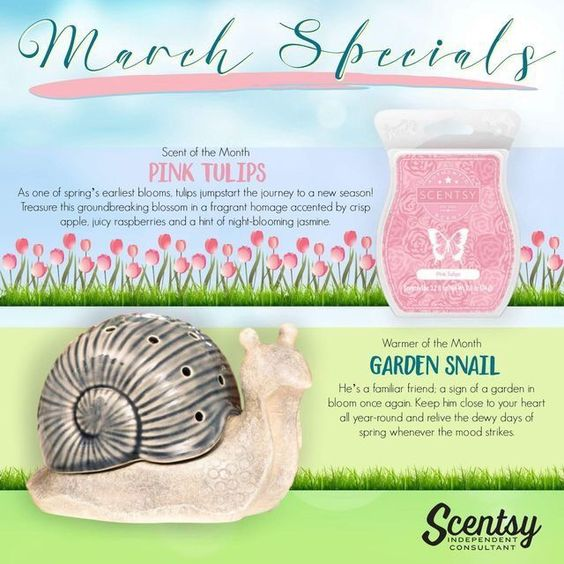 Scentsy Messages And Facebook On Pinterest