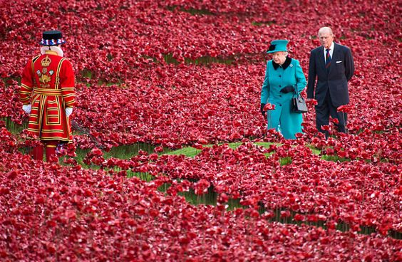 In Pictures: Tower of London poppy display #RemembranceDay