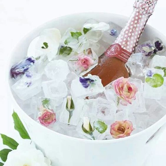 Flores dentro do gelo