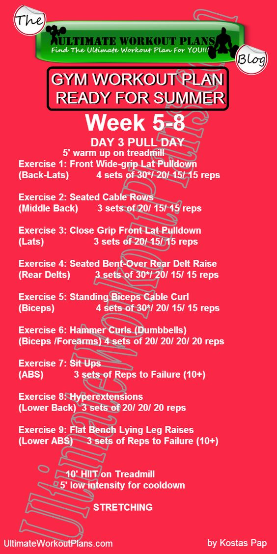 3 Month Women Workout Plan Week 5-8 Day 3 Pull Day FREE - exercise plan template