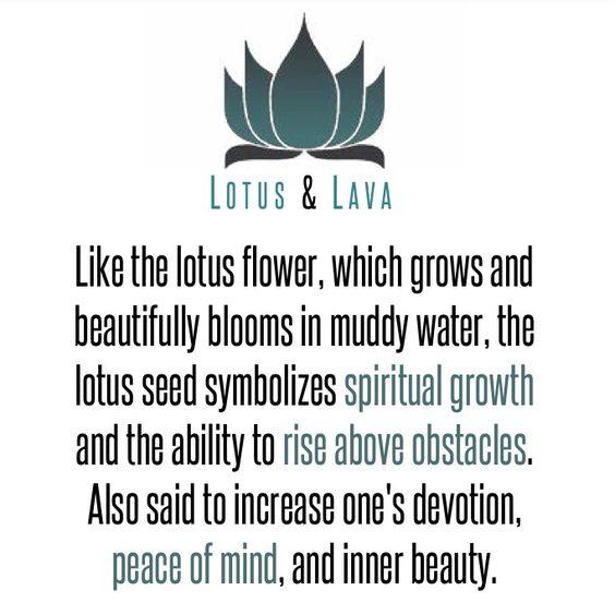 Lotus Seed.  Shop lotus seed bracelets: http://etsy.me/1Ttc2KT