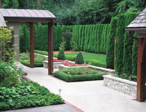 Arborvitae hedge lots of green backyard inspiration for Green privacy fence ideas